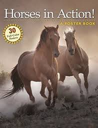 poster-book-horses-in-action