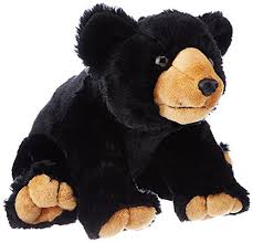 black-bear-large