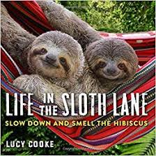 life-in-the-sloth-lane