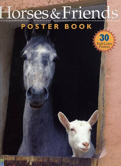 poster-book-horses-and-friends