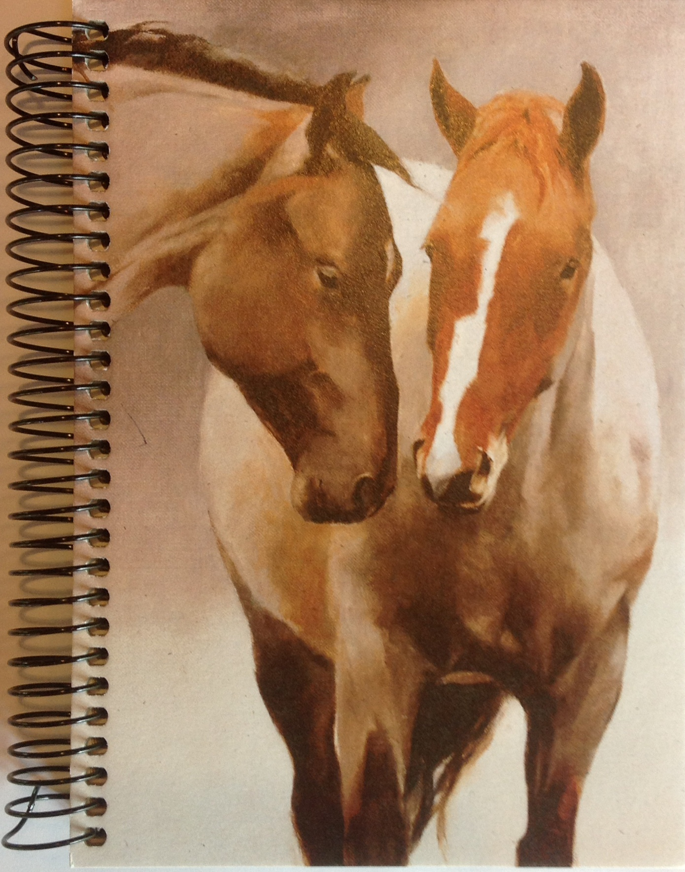 journal-horse-pasture-friends