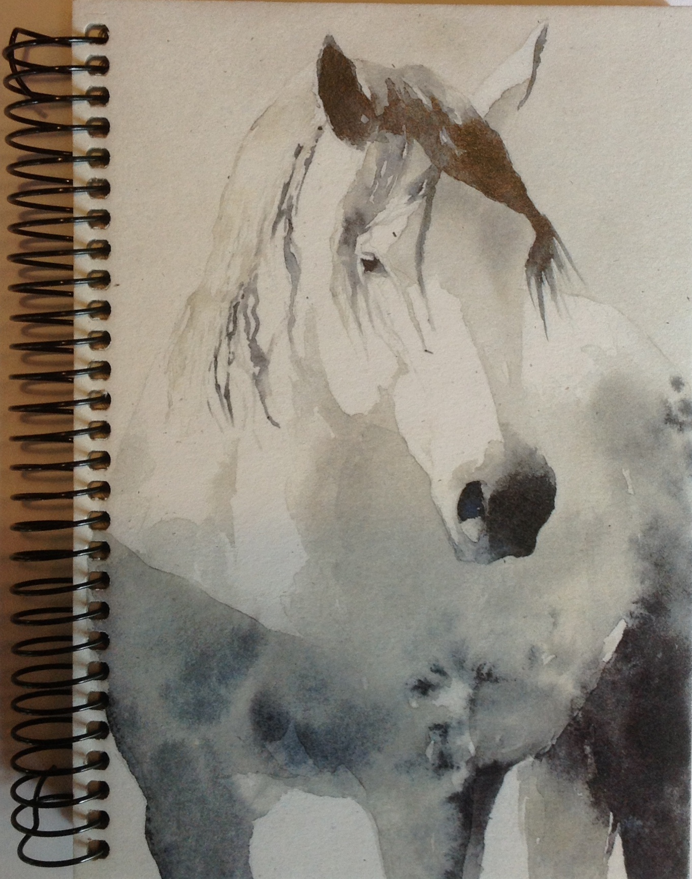 journal-horse-dappled